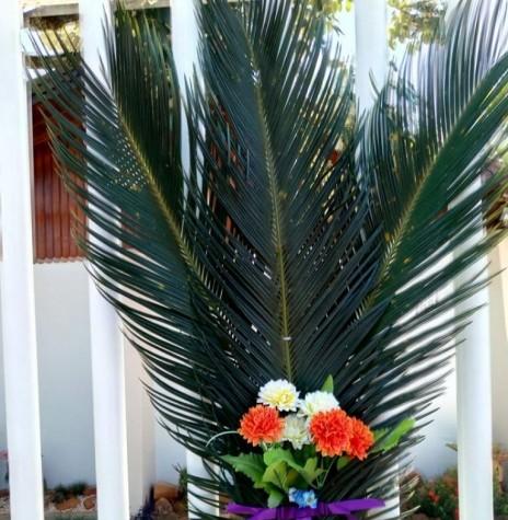 Lembrança de Domingo de Ramos 2020 de Elenita Salete Foopa, afixada no portão de acesso à residência. Imagem: Acervo pessoal/Facebook - FOTO  21 -