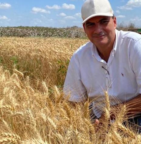 Agricultor Alexandre Sales em sua lavoura de trigo, a primeira cultivada no Nordeste Brasileiro, no estado do Ceará. Imagem: Acervo Alattea Agronegócios - FOTO 15 -