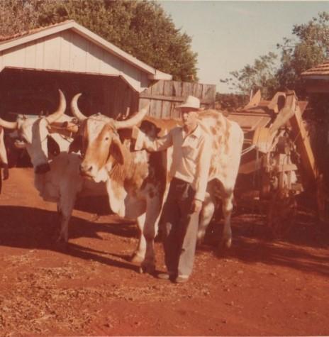 Casal Rene Assela e Seni Edemar Schacht, pioneiro do distrito de São Roque, ele falecido em 27 de fevereiro de 1992 e ela em 06 de fevereiro de 1997.  Imagem: Acervo Clarice Beatriz Schacht Fietz - FOTO 3 -