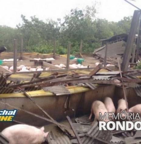 Chiqueiro danificado no distrito de Iguipora, em 16 de novembro de 2017.  Imagem: Acervo Marechal ONLine - FOTO 4 -