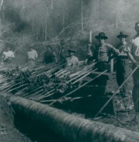 Primeira churrascada na então localidade de Maripá, em 1953  Provavelmente, foi para comemorar a fundação da vila.  Imagem: Acervo da prefeitura. - FOTO 6  -