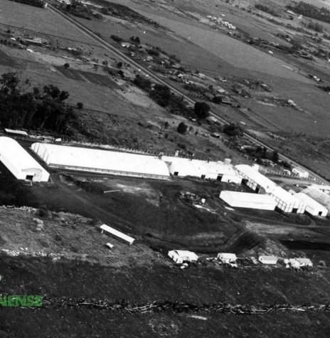 Complexo da Copagril em expansão na década de 1970, com destaque para a Avenida Maripá e o vazio do atual Jardim Alvorada.  O armazém inflável da Cibrazem pode ser visto, à direita, em frente a avenida.  Imagem: Acervo Orlando e Rafael Sturm - FOTO 3 -