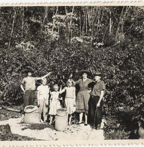 Francisco e Alvine Strenske  com os filhos na lavoura de café na chácara de sua propriedade na Sanga Borboleta, em fotografia de 1959. Da esquerda à direita: Guido, Haari, Ursula e Lizelote, Alvine e Francisco Imagem: Acervo Haari Strenske - FOTO 1 -