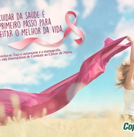 Banner de apoiamento da Copagril à campanha Outubro Rosa 2018.  Imagem: Acerco Comunicação Copagril - FOTO 17 -