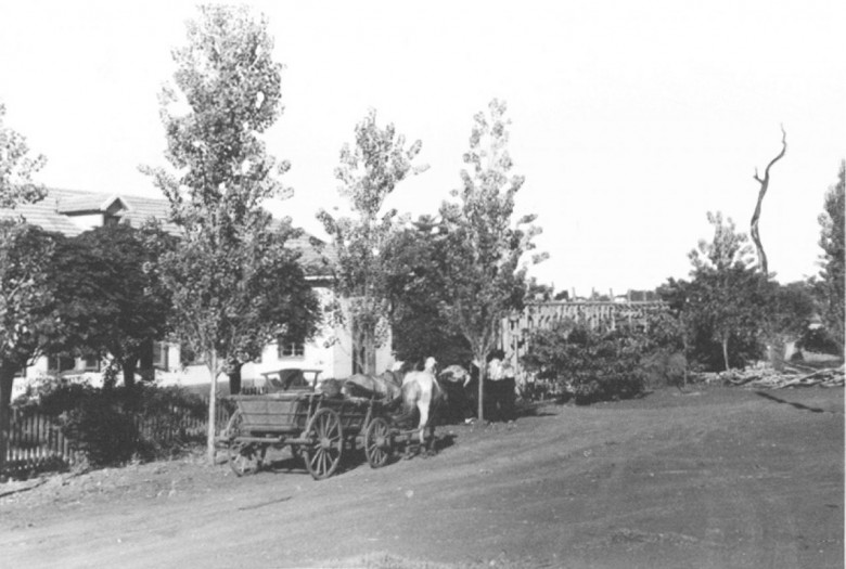 Vista do Hospital e Maternidade Filadélfia e ao fundo a árvore de peroba que funcionou como pára-raio, até queimar, em 1960. A direita, vê-se o levantamento das paredes da primeira ampliação do hospital.