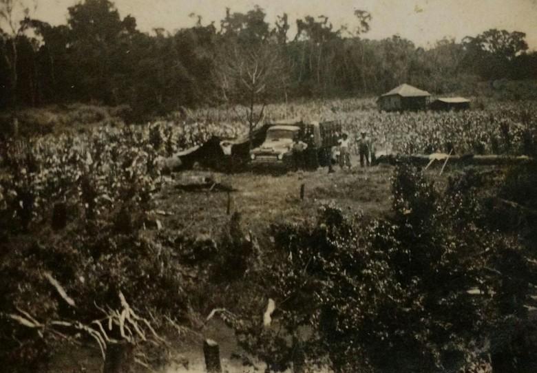 Família descarregando a  mudança do caminhão e a abrigando debaixo de  lona, junto a uma árvore, na década de 1950.