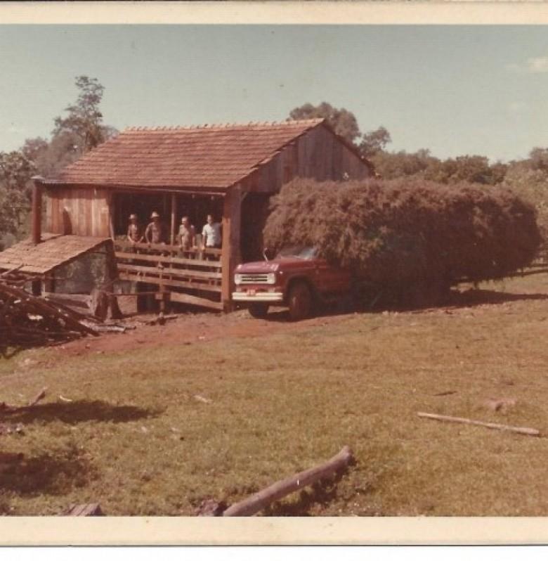 Alambique de hortelã do pioneiro rondonense Edgar Weber, no distrito rondonense de Bom Jardim.  Imagem: Acervo da família.