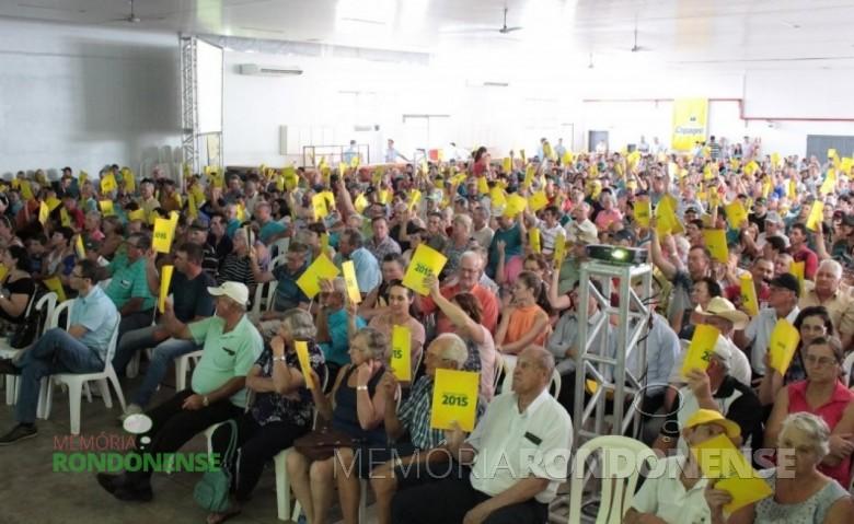 Associados da Copagril aprovando a Prestação de Contas 2015.  Imagem: Imprensa Copagril - FOTO 5 -