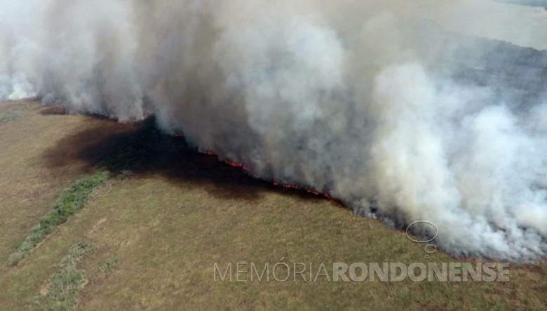 Incêndio no Parque Nacional da Ilha Grande.  Imagem: Acervo ICMbio - FOTO 13 -
