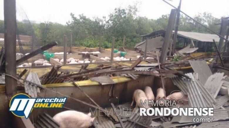 Chiqueiro danificado no distrito de Iguipora, em 16 de novembro de 2017.  Imagem: Acervo Marechal ONLine - FOTO 5 -