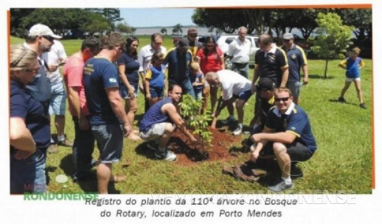 Plantio da 110ª árvore no Bosque do Rotary localizado no espaço do Terminal Turístico de Porto Mendes. Imagem: Acervo O Presente - FOTO  – 9 -