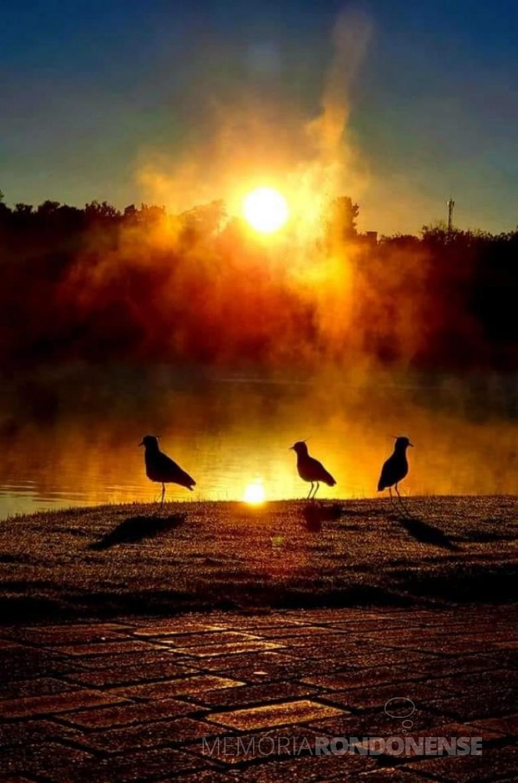 Nascer do sol visto a partir do Parque de Lazer Rodolfo Rieger e seu reflexo na geada do local, em Marechal Cândido Rondon.  Imagem e crédito: Roberto Kleinschmidt - FOTO 9 -