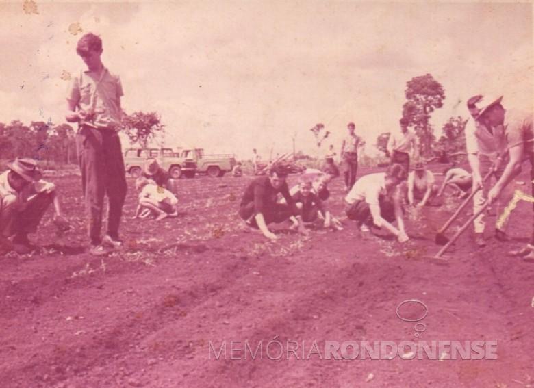 Plantação de grama para a formação do campo do Oeste Paraná FC, hoje Estádio Waldir Schneider.  Em pé, Orlando Miguel Sturm. Agachados: Alfredo Bausewein ( treje escuro) e Eugênio Müller (de camisa branca, foi por muitos anos tesoureiro da Prefeitura Municipal de Marechal Cândido Rondon).