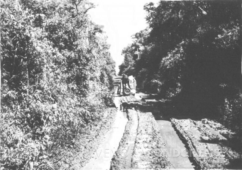 Estrada  entre a então localidade Entre Rios aSanta Helena, em  1961.
